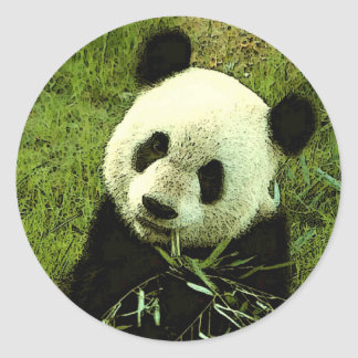Panda Round Sticker