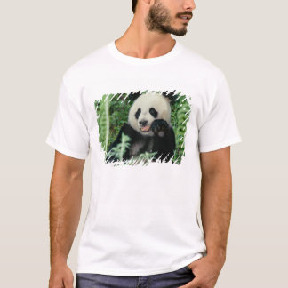 Panda the forest, Wolong, Sichuan, China T-Shirt