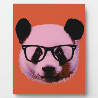 Panda with glasses in orange display plaque
