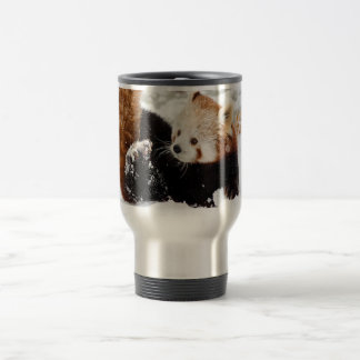 Panda-young as thermal cups