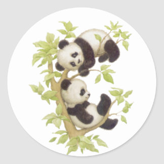 Pandas Playing in a Tree Classic Round Sticker