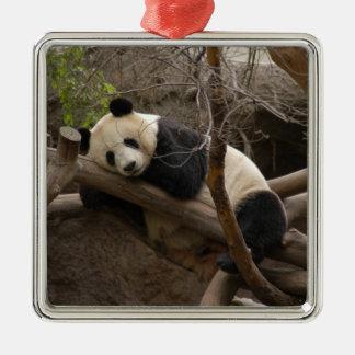 PandaSD003 Christmas Ornament