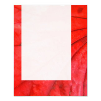 Panel 0111 - Japanese Maple Leaf Flyer