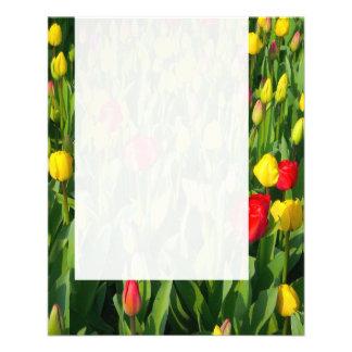Panel 021 - Tulips Flyer