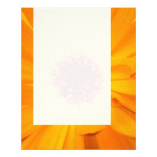 Panel 026 - Orange Marigold Flyer Design