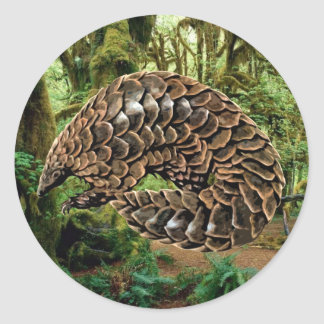 Pangolin Sticker
