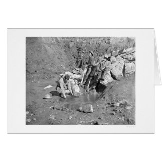 Panning for Gold Alaska 1902 Greeting Cards