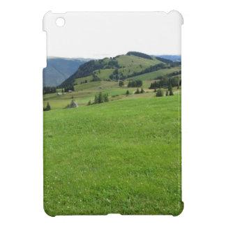 Panoramic mountain view iPad mini case