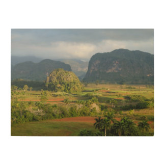 Panoramic valley landscape, Cuba Wood Print