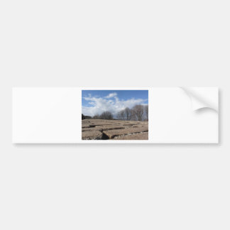 Panoramic view from the medieval walls of Volterra Bumper Sticker