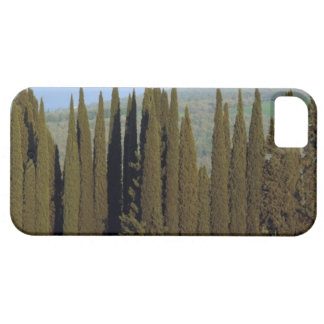 panoramic view of cypress trees near Siena Case For The iPhone 5