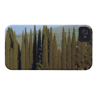 panoramic view of cypress trees near Siena iPhone 4 Case