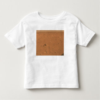 Panoramic view of Mars 10 Toddler T-Shirt