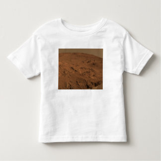 Panoramic view of Mars 7 Toddler T-Shirt