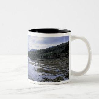 panoramic view of mountains and lake 3 Two-Tone coffee mug