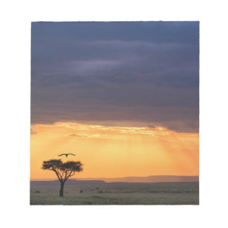 Panoramic view of Vulture and acacia tree Notepad