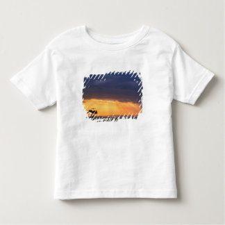 Panoramic view of Vulture and acacia tree Toddler T-Shirt