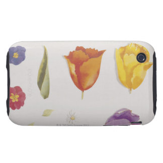 Pansies and Tulips Tough iPhone 3 Cases