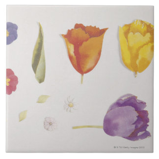 Pansies and Tulips Tile
