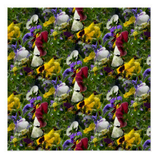 Pansies Forever... Poster