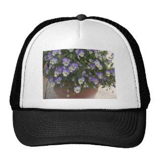 pansies trucker hats