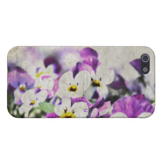 Pansies iPhone 5 Covers