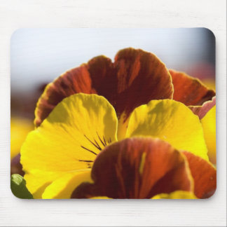 Pansies Mouse Pad