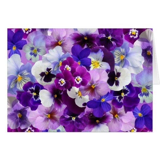 Pansies Spring Flowers Blank Greeting Card