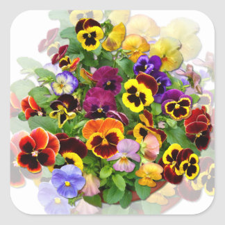 PANSY BEAUTY ~ Square  Stickers