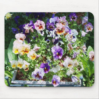 pansy bed mouse mats