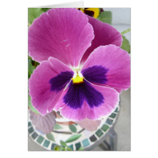 Pansy Card