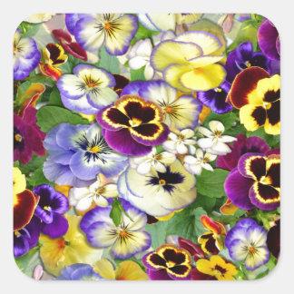 Pansy Cascade Square Sticker