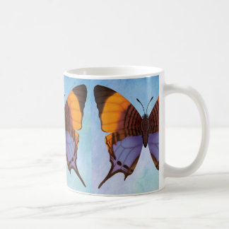 Pansy Daggerwing Butterfly Coffee Mug