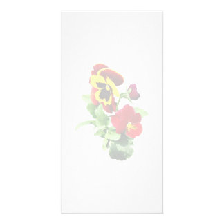 Pansy Family Photo Greeting Card