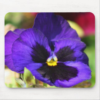 Pansy Flower Mousepad