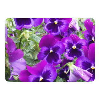 Pansy Flowers 13 Cm X 18 Cm Invitation Card