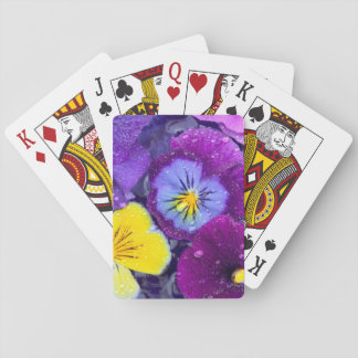Pansy flowers floating in bird bath with dew 2 deck of cards