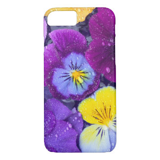 Pansy flowers floating in bird bath with dew 2 iPhone 7 case