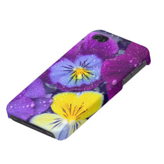 Pansy flowers floating in bird bath with dew 2 iPhone 4 covers