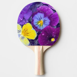 Pansy flowers floating in bird bath with dew 2 ping pong paddle
