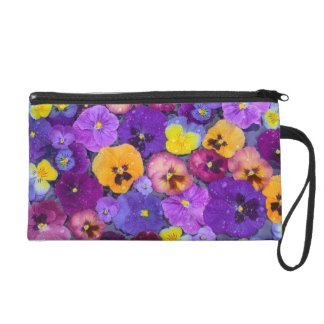Pansy flowers floating in bird bath with dew wristlets
