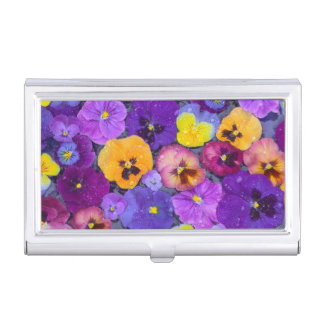 Pansy flowers floating in bird bath with dew business card cases