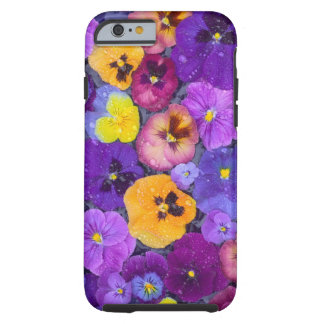 Pansy flowers floating in bird bath with dew tough iPhone 6 case