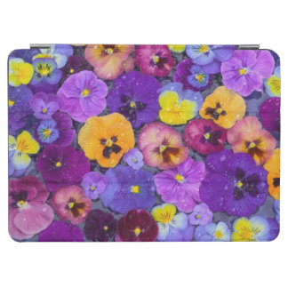Pansy flowers floating in bird bath with dew iPad air cover