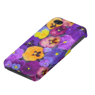 Pansy flowers floating in bird bath with dew iPhone 4/4S cases