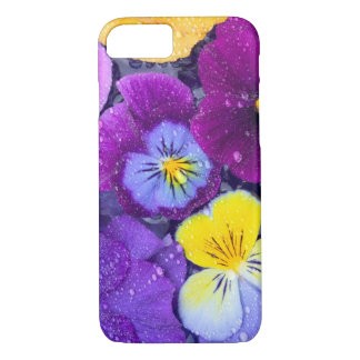 Pansy flowers floating in bird bath with dew iPhone 7 case