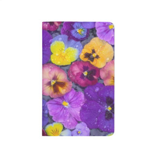 Pansy flowers floating in bird bath with dew journals