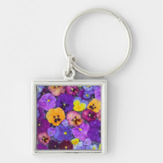 Pansy flowers floating in bird bath with dew keychains