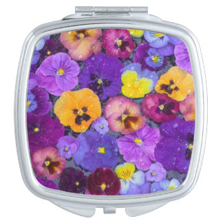 Pansy flowers floating in bird bath with dew mirrors for makeup