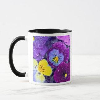 Pansy flowers floating in bird bath with dew mug
